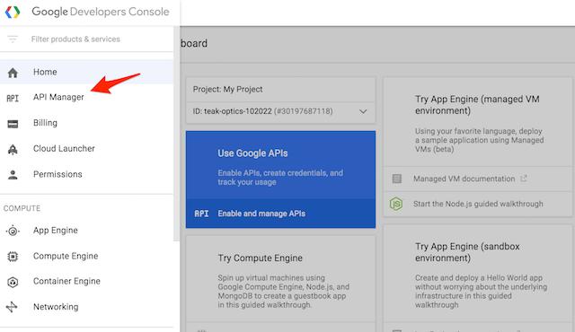點擊 API Manager 按鈕以進入